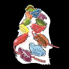 Wędrujące Dinozaury