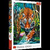 Drapieżny tygrys