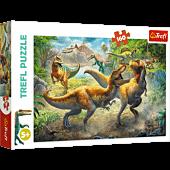 Walczące Tyranozaury