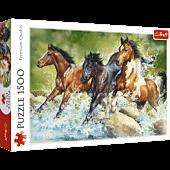 Trzy dzikie konie