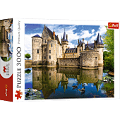 Castle in Sully-sur-Loire, France
